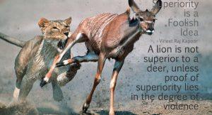 Superiority is a Foolish Idea