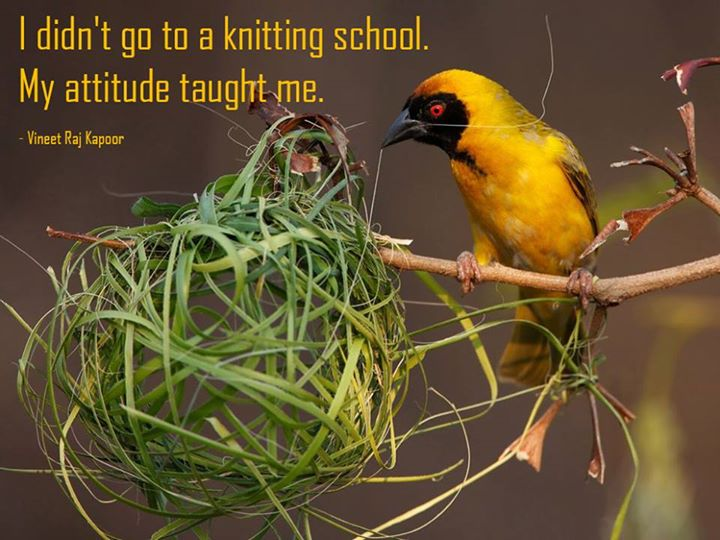 I didn't go to a Knitting School. My Attitude taught me. - Vineet Raj Kapoor